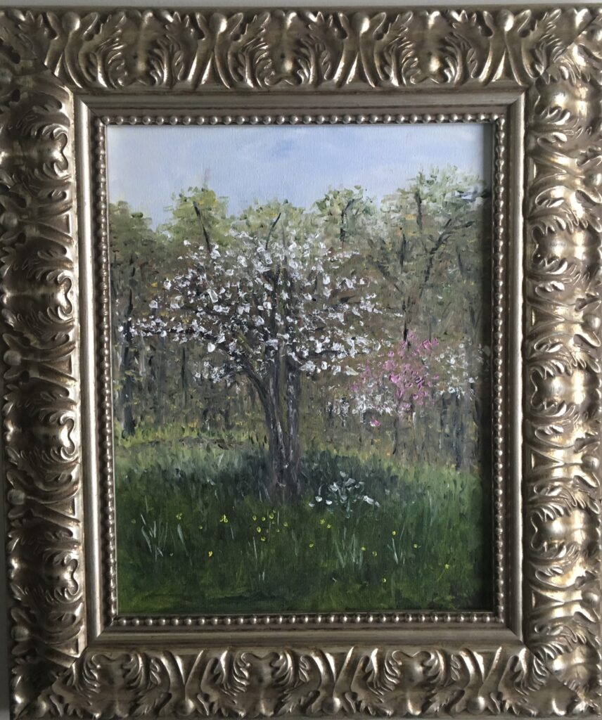 111 - Dogwood Spring - 8 x 10  - Landscape - $100
